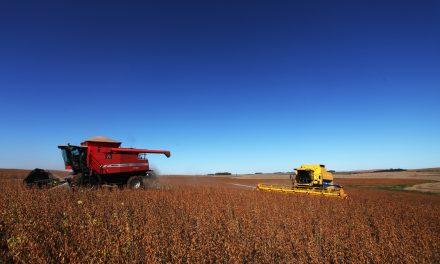 Sistema financeiro estimula consumo de agrotóxicos no Brasil