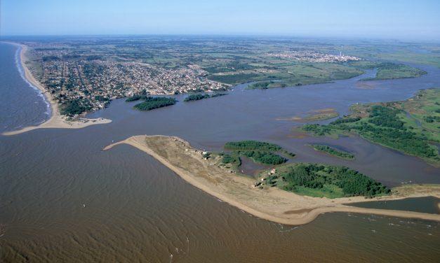 Veja o que seu estado informa sobre monitoramento de agrotóxicos na água