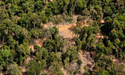 Enfraquecimento do Meio Ambiente afeta regime de chuvas