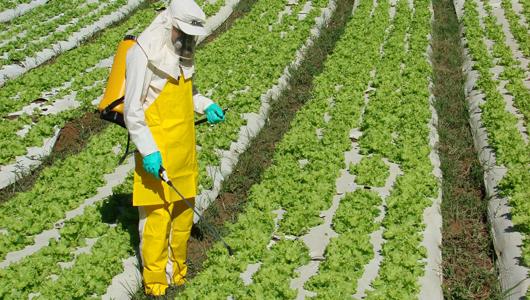Secretaria de saúde alerta para uso indiscriminado de agrotóxicos em Goiás